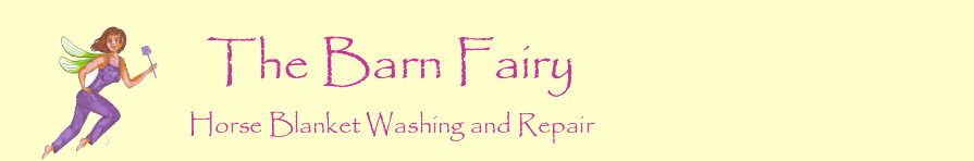 The Barn Fairy